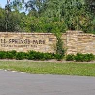 Wall Springs 1